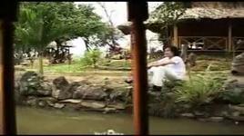Tải Nhạc Tâm Sự Loài Chim Biển - Lý Thái Sơn