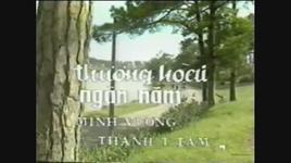 Tải Nhạc Thương Hoài Ngàn Năm (Tân Cổ) - Minh Vương
