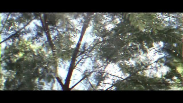 Xem MV Yo Te Esperare - Cali Y El Dandee