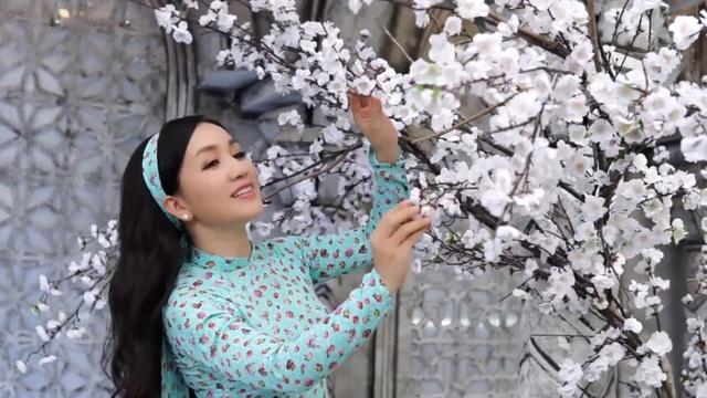 Ca nhạc Cánh Bướm Vườn Xuân - Hà Vân