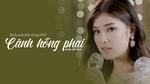Tải nhạc Zing Cánh Hồng Phai (Kế Hoạch Đổi Chồng OST) về máy