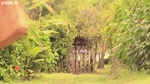 Xem video nhạc Zing Tropical House - Deep House Mix