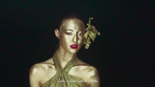 Xem MV Fin / วันทอง - The Rube, Mildvocalist