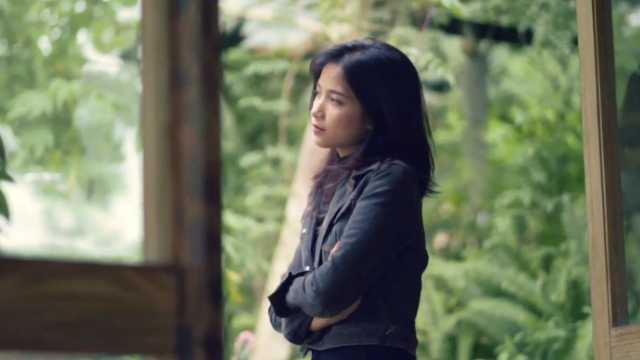 Hỏi Thăm - Dreamer, Triệu Anh