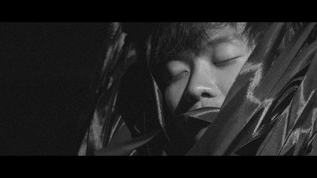 Xem MV Con Chim Trên Cành Hát Về Tình Yêu - Tùng