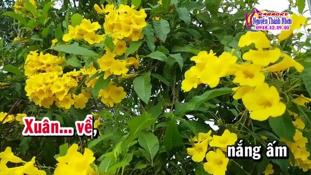 Xem MV Đến Trường Cùng Mùa Xuân (Mv Karaoke) - Minh Phương   MV - Nhạc Mp4 Online