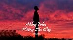 Download nhạc hot Hồng Trần Vương Sầu Cay online miễn phí