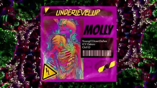 MV Molly (Lyric Video) - Young Cclown, Icy Oshiro, Chill D
