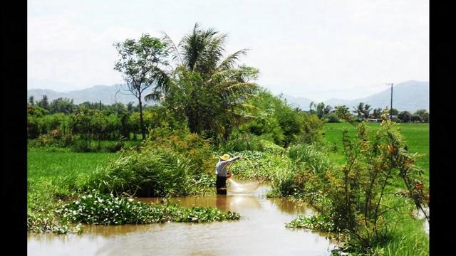 MV Tình Ca Phạm Thanh Liêm - Bích Ngọc, Anh Dinh, Mai Xuân Việt, Thủy Tiên , Mỹ Huyền, Thanh Pháp