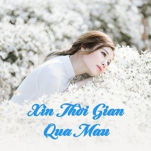 Download nhạc hay Xin Thời Gian Qua Mau Mp3 miễn phí về điện thoại