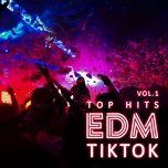 Tải nhạc Mp3 Top Hits EDM TikTok - (Vol.1) miễn phí về máy