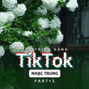 Nghe và tải nhạc Top Thịnh Hành TikTok (Nhạc Trung) - Part 12 hot nhất