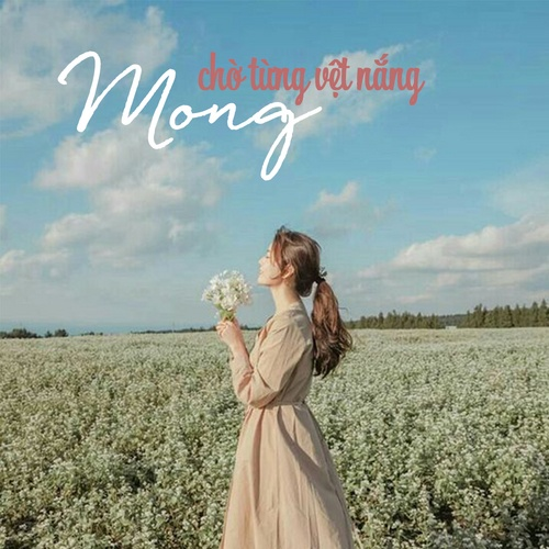Nghe và tải nhạc hot Mong Chờ Từng Vệt Nắng