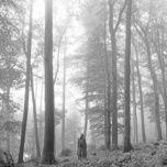 Tải nhạc Mp3 Folklore (Bonus Track Version) trực tuyến