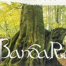 Tải Nhạc Childhood Memory - Bandari