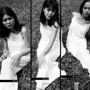 Download nhạc Bức Họa Đồng Quê Mp3 trực tuyến