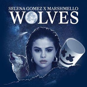 Nghe và tải nhạc hay Wolves trực tuyến