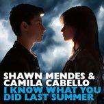 Bài hát I Know What You Did Last Summer Mp3 hay nhất