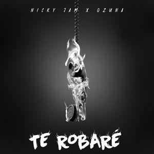 Download nhạc hot Te Robaré về máy