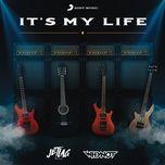 Bài hát It's My Life online miễn phí