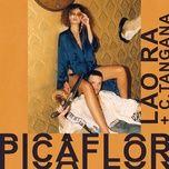 Tải nhạc Mp3 Picaflor hay nhất