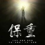 Bài hát Bảo Trọng / 保重 Mp3 online