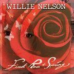 Nghe và tải nhạc hot First Rose of Spring