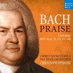 Nghe nhạc Jesu, nun sei gepreiset, BWV 41: III. Ach! Deine Hand, dein Segen muß allein (Recitativo) hay nhất