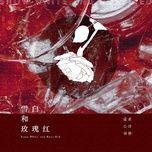 Bài hát Tuyết Trắng Cùng Hoa Hồng / 雪白和玫瑰红 hot nhất