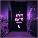 Tải nhạc Zing I Never Wanted (Extended Mix) miễn phí