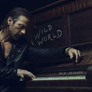 Nghe nhạc hay Wild World Mp3 hot nhất