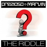Tải bài hát Mp3 The Riddle (Radio Edit Mix) hay nhất