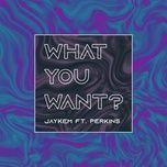 Nghe và tải nhạc hay What You Want? Beat chất lượng cao