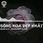 Tải nhạc Zing Bông Hoa Đẹp Nhất (Lofi Version) về máy