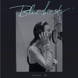 Nghe và tải nhạc Blue Bird (Nửa Là Đường Mật, Nửa Là Đau Thương OST) hot nhất về điện thoại