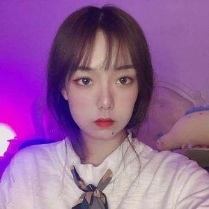Nghe và tải nhạc Đại Thiên Bồng / 大天蓬 Mp3 hay nhất