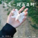 Tải nhạc Hoa Quỳnh Chớm Nở Mưa Đúng Lúc / 昙花一现雨及时 Mp3 nhanh nhất