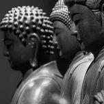 Tải Nhạc Sound Of Buddha - V.A