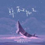 Download nhạc hot Kình Lạc Vạn Vật Sinh / 鲸落万物生